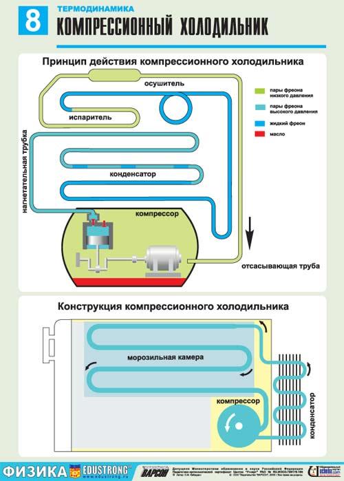 важно компрессионные холодильники в машину состав термобелья
